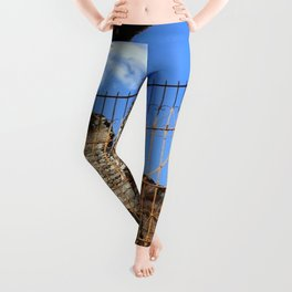 Lonely Dog Leggings
