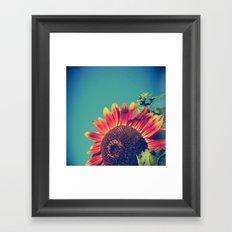 Summer Sunflower Framed Art Print