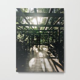 Forest and the sun Metal Print