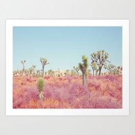 Surreal Desert - Joshua Tree Landscape Photography Art Print