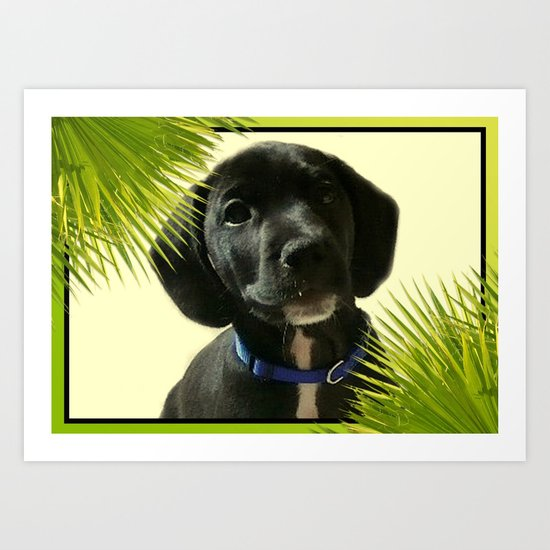 Puppy Chico Art Print