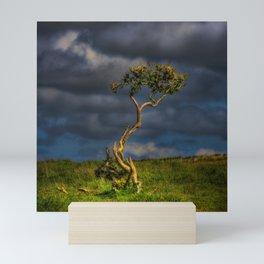 Survive I Will - Lone Gorse on Windswept Moors Mini Art Print