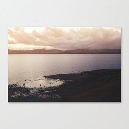 Taupo Canvas Print