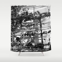Vines & Gauges Shower Curtain