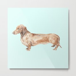 A long dog: Dachshund doxie puppy dog watercolor pet portrait Metal Print