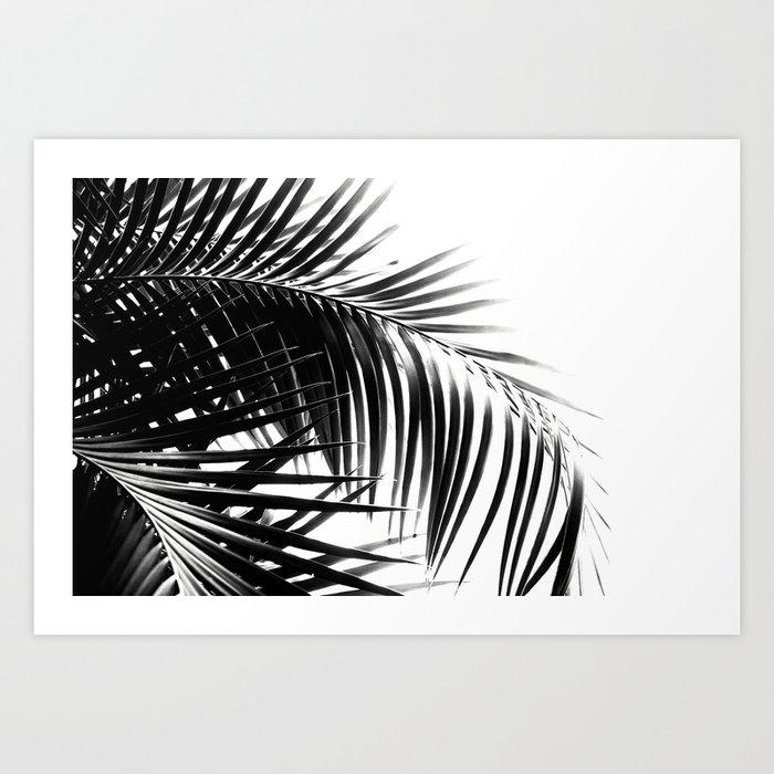 Palm Leaves Black & White Vibes #3 #tropical #decor #art #society6 Kunstdrucke