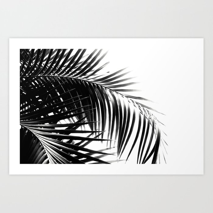 Palm Leaves Black & White Vibes #3 #tropical #decor #art #society6 Art Print