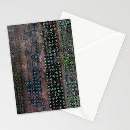 A Manicured Jungle Stationery Cards