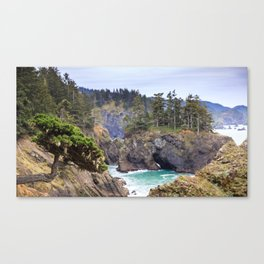 A Tree Clings to the Cliffside in the Samuel H. Boardman State Scenic Corridor Canvas Print