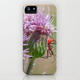 Kill Pose Red iPhone Case
