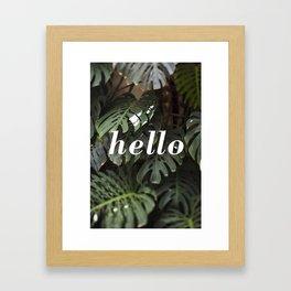 Hello on Monstera Framed Art Print
