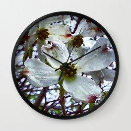 Dogwood Blossoms in the Rain Wall Clock