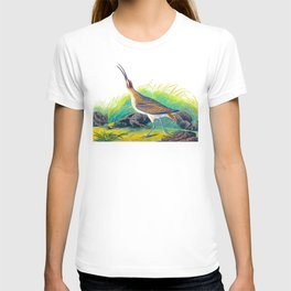 Hudsonian Curlew T-shirt