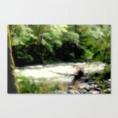 Franklin - Gordon River Canvas Print