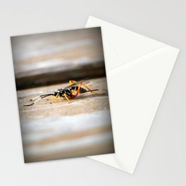 Parasitic Wasp Stationery Cards