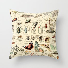 Vintage Insect Identification Chart // Arthropodes by Adolphe Millot XL 19th Century Science Artwork Throw Pillow