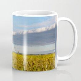 Morass grass in sun rising Coffee Mug