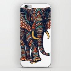 Ornate Elephant v2 (Color Version) iPhone & iPod Skin