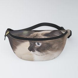 Chocolate Ragdoll Cat Fanny Pack