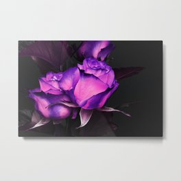 Two neon roses on black Metal Print