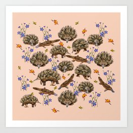 monotremes and wildflowers on apricot Art Print