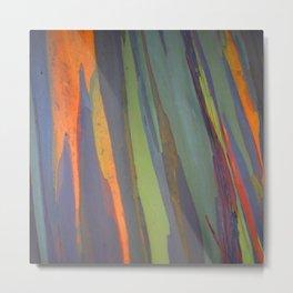 Rainbow Eucalyptus Magic Metal Print