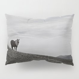 A Pony in the Pyrenees Pillow Sham