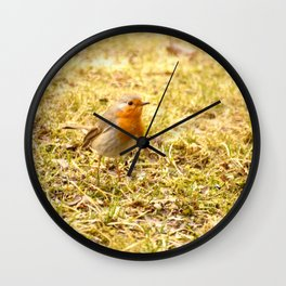 Hello Robin! Wall Clock