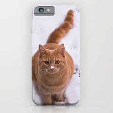 Ginger Kitty Discovers Snow! iPhone 6s Slim Case