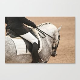 Dressage Dapple Canvas Print