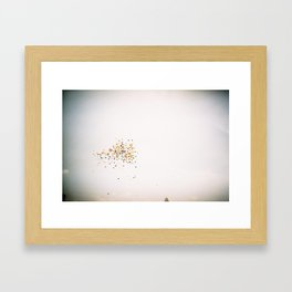 Color-Peppered Sky Framed Art Print