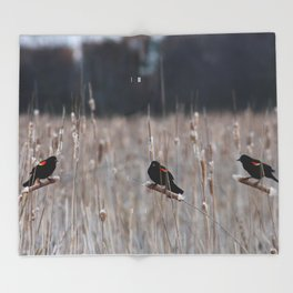 Blackbirds Singing Throw Blanket