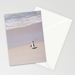 Lone African Penguin on Cape Town beach Stationery Cards