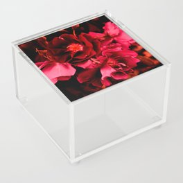 Seeing red Acrylic Box
