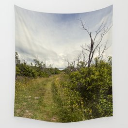 a path in the highlands Wall Tapestry