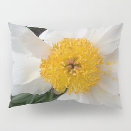 White Beauty by Teresa Thompson Pillow Sham