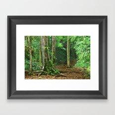 Jungle in Tikal, Guatemala Framed Art Print