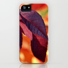 VIBRANT FALL LEAVES iPhone Case