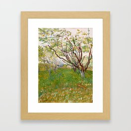 The Flowering Orchard by Vincent van Gogh, 1888 Framed Art Print