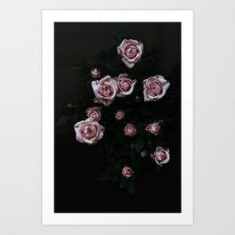 Velvet Rose Pink Art Print