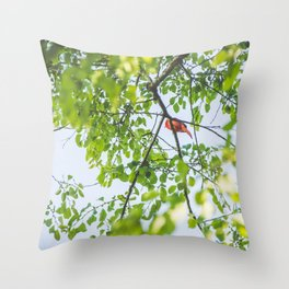 Song from Above Throw Pillow