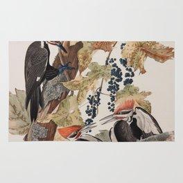 John James Audubon -Woodpecker Rug