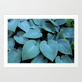 GREEN LEAVES WITH RAIN-DROPS Art Print