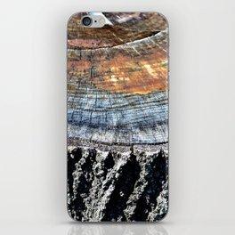 Tree Stump Circle Texture iPhone Skin