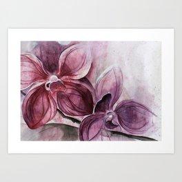 Flower series Art Print