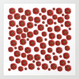 Red Poppies Transparent Art Print