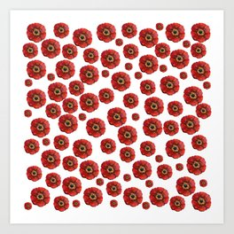 Red Poppies Transparent Design Art Print