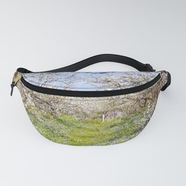 Plum flower, Photo Plum flower, Plum flower hill, beautiful view, Poster print, Canavas Print Fanny Pack