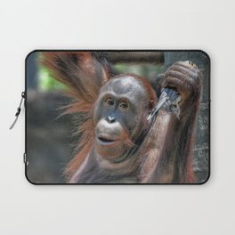 Orangutan Laptop Sleeve