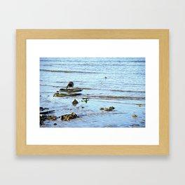 Trash Bird, #1 Framed Art Print